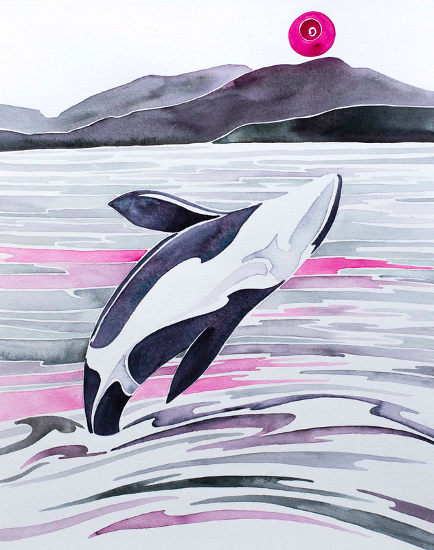 Breaching orca 'Exuberance' watercolor by Andrea England